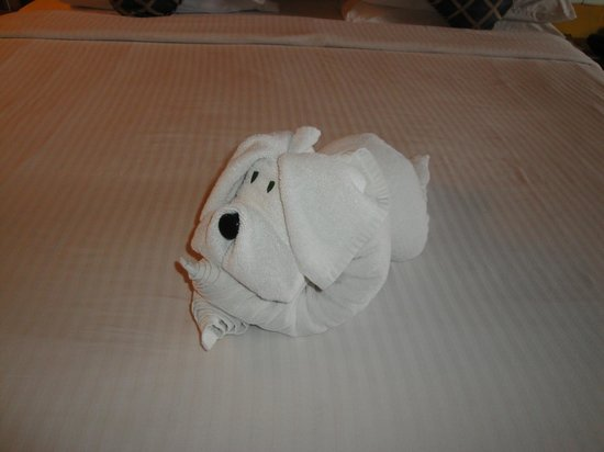คลับมหินทรา โกดาคูแวลเลย์: that was a cute puppy on the bed in the room