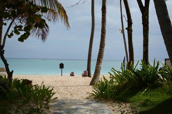 Bavaro Princess All Suites Resort, Spa & Casino: Blick zum Strand