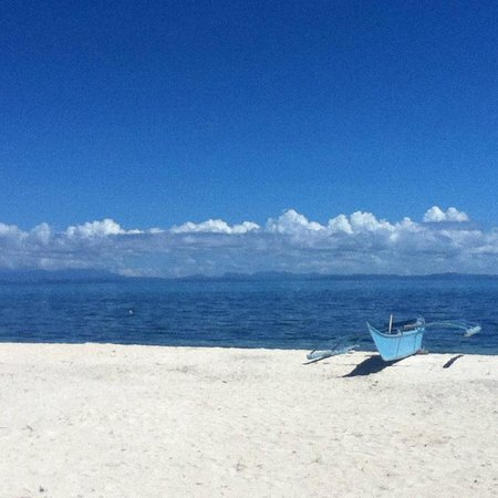 Blue Corals Beach Resort: A beach area of Malapascua