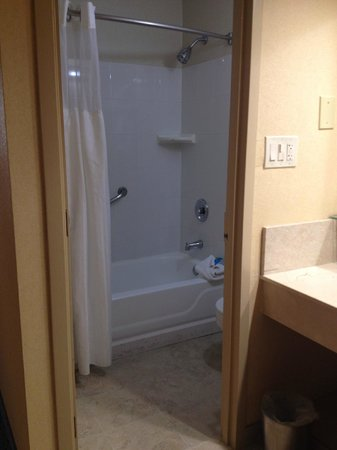 Radisson Hotel Valley Forge : Very small bathroom.
