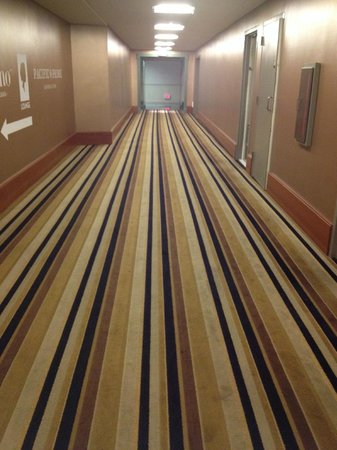 Radisson Hotel Valley Forge : Outdated carpet and ugly
