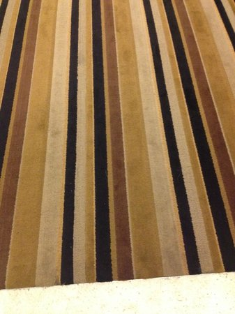 Radisson Hotel Valley Forge : Stains all over carpets