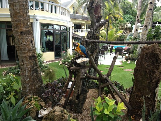 Paradise Bay Beach & Watersport Resort: inside the hotel grounds