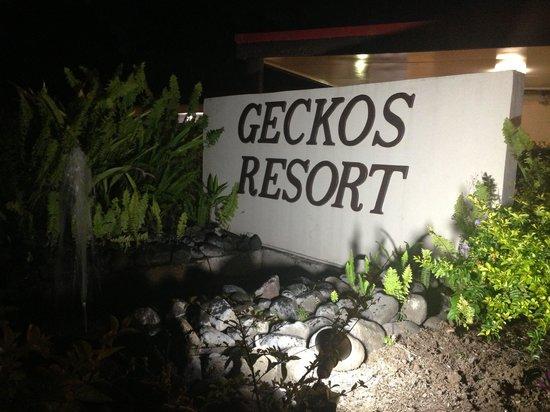 Gecko's Resort : Geckos