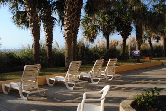 Sea Mist Oceanfront Resort: Ocean frontroom