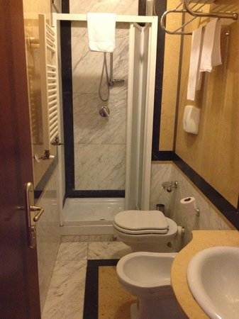Champagne Garden Hotel: Shower door doesn't close properly