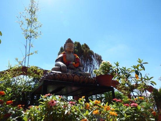 Hotel Tibet: rooftop bar garden