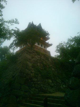 Sumoto Castle: 再建した天守閣