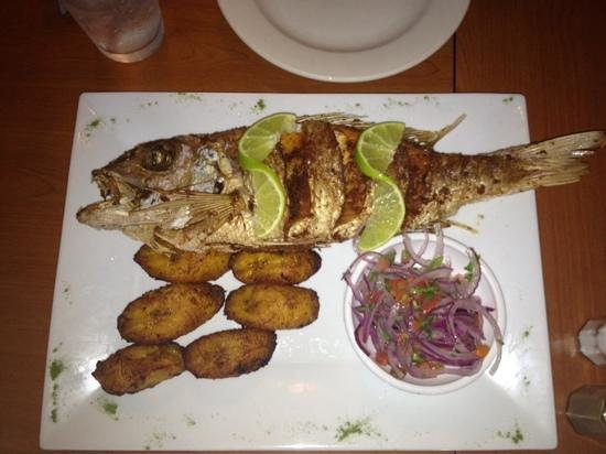 Great El Patio Restaurant: Snapper!
