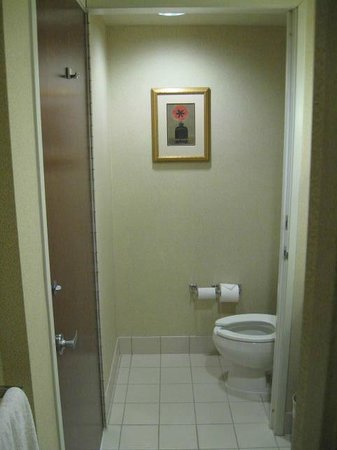 Holiday Inn Grand Rapids - Airport : Door closed in bathroom frame, toilet room frame open