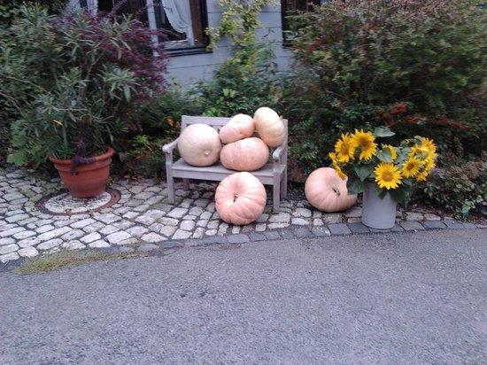 Hotel Schlafschon : Lovely autumn atmosphere