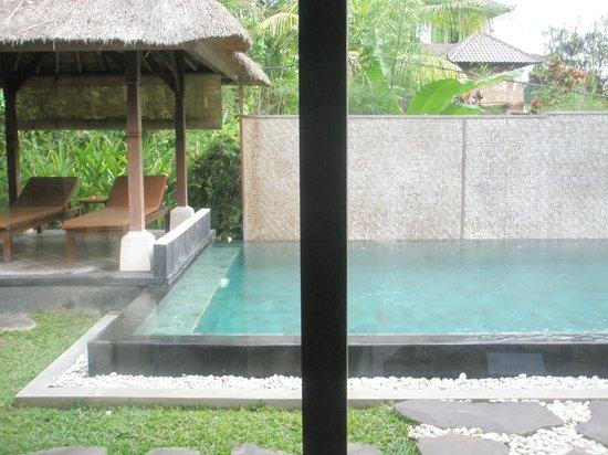 Villa Nirvana Bali: Private Pool
