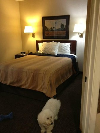 Candlewood Suites Petersburg/Hopewell : Bedroom w/ door