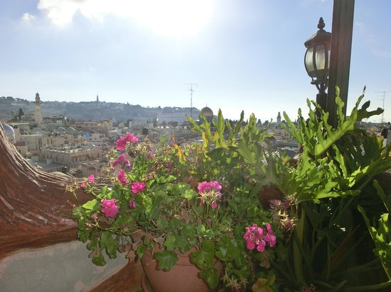 Hashimi Hotel: View from the rooftop terrace