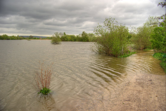 Attenborough Nature Centre: Floody Hell!