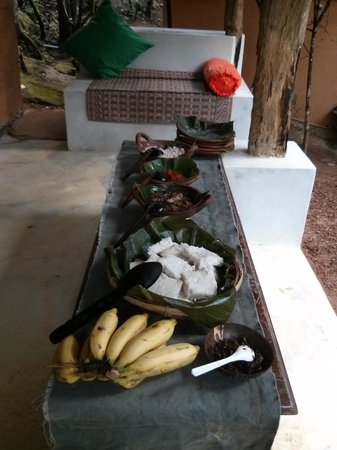 Rainforest Retreat : Breakfast