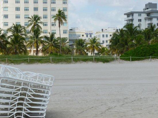 Hotel Ocean: Hotel from Beach