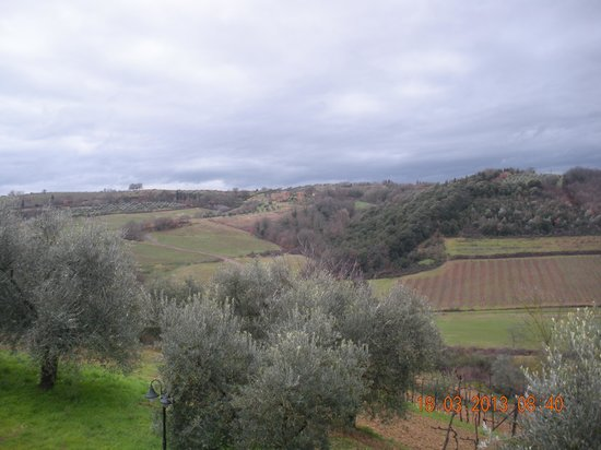 Podere Sant'Alessandro: View to the oposite direction (south)