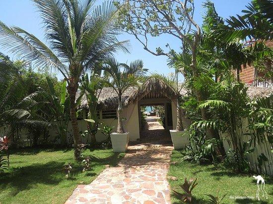 The Chili Beach Boutique Hotel & Resort: Jardim