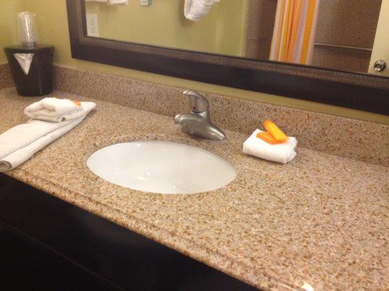 La Quinta Inn & Suites Austin - Cedar Park: Executive King bath.
