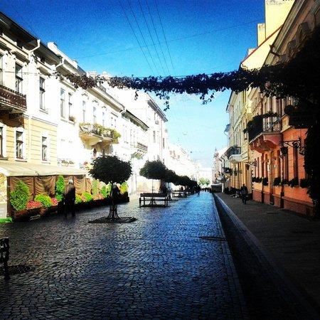 Olha Kobylyahska Street : С утра