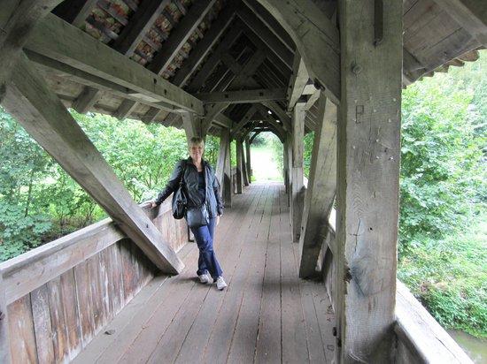 Pension Fuchsmuehle: Bridge on path to the village