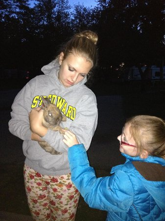 Camp Sandusky: The kids loved the bunnies