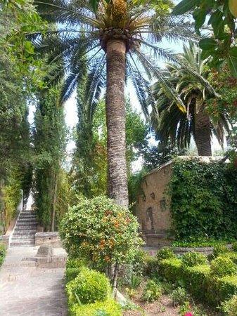Palacio de Mondragón: The beautiful garden with its stunning view