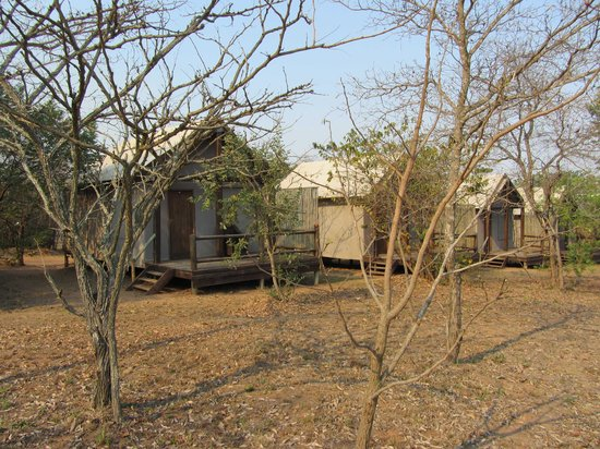 Nkambeni Safari Camp: Your accomodation