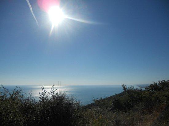 Alle Pendici del Conero : Sole e mare