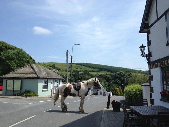 Tipperary Mountain Trekking Centre : Upperchurch drink break