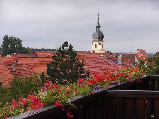 Schwan, Zum Rodelseer: View toward village centre