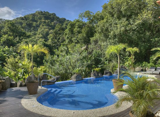 Hotel Pumilio: Pool and gardens