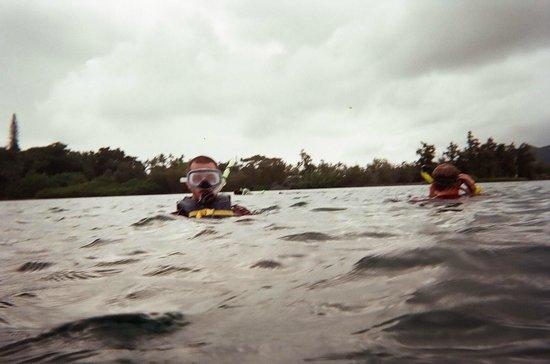 Holokai Kayak and Snorkel Adventure: snorkeling