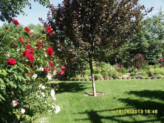 Yolanta's B&B: Private Garden