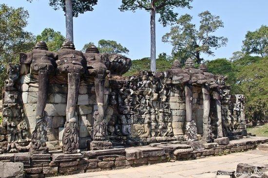 Terraza De Los Elefantes Opiniones De Viajeros Sobre