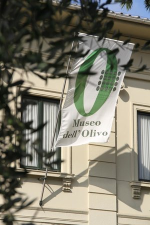 Museo dell'Olivo : Museum