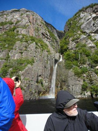 BonTours Boat Tours: Waterfalls on side of fjord