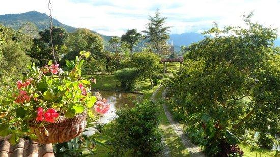 Hostal selva y caf picture of jardin antioquia for Jardin antioquia