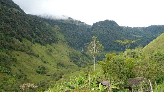 Finca los angeles picture of jardin antioquia for Antioquia jardin