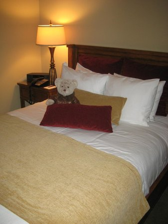 The Esmeralda Inn: Our teddy bear (Oatmeal) amongst the plush pillows