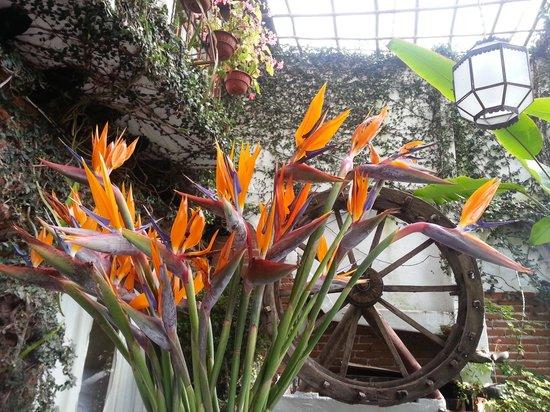 Meson de Leyendas: Flores