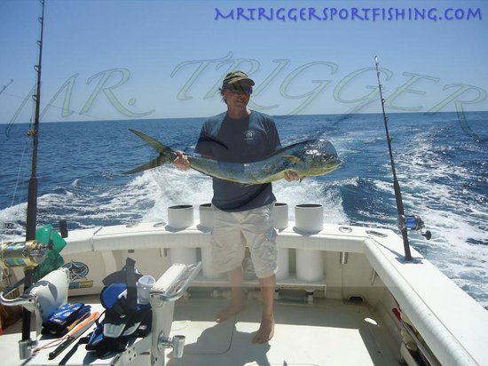 Mr. Trigger Sport Fishing: 45 lb Dorado , mahi mahi