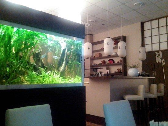 Osaka Sushi Bar : Interior with aquarium