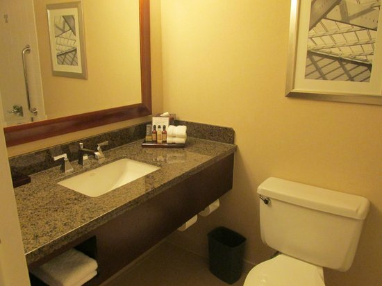 Raleigh Marriott Crabtree Valley : Bathroom