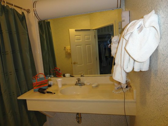 Meadowbrook Inn & Suites : sink