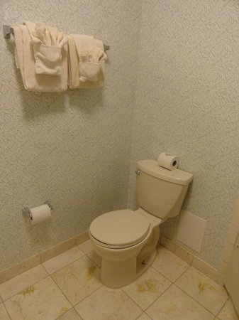 Meadowbrook Inn & Suites: commode