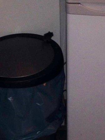 Damrak Apartments: mouse on bin in kitchen