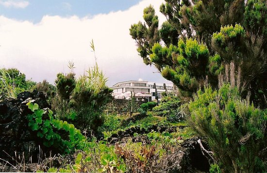 Caloura Hotel Resort: Great place, beautiful wild nature