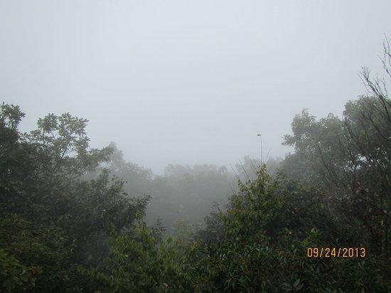 Len Foote Hike Inn: View from Inn on misty morning